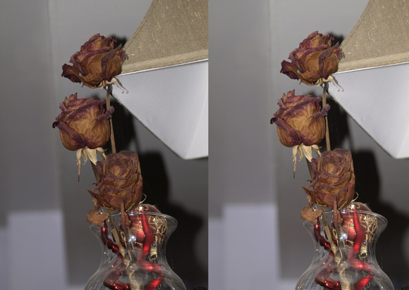 3D dried roses
